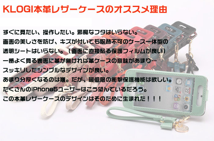 iPhone5s専用ビジネスケース 本革 iPhone 5sレザーケース